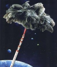 Ostrich duster with extensible handle Ref. 6  Click to enlarge
